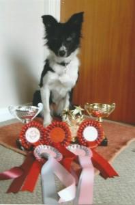 Bella prizes