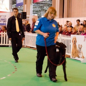 Melanie-Sharing Paweosme-dog-training -cumbria- crufts finalist